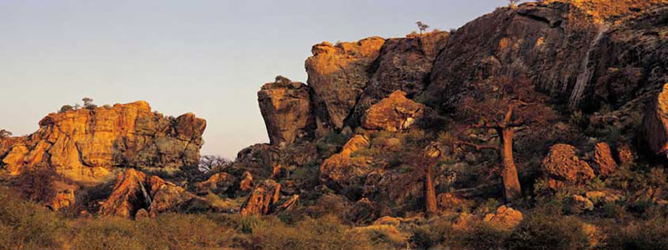 The Northern Cape