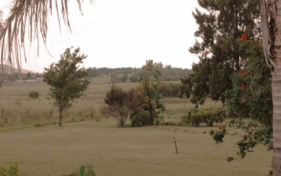Kambula Camp